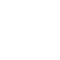 print security icon
